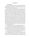 Sáng kiến kinh nghiệm: Thực trạng và một số giải pháp tăng cường năng lực quản lý tài chính trong các đơn vị trực thuộc Sở Giáo Dục trên địa bàn tỉnh Lai Châu