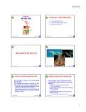Bài giảng Động vật học và phân loại động vật: Chương 7 - Nguyễn Hữu Trí