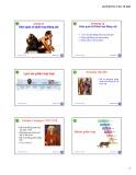 Bài giảng môn Sinh học động vật: Chương 12 - Nguyễn Hữu Trí