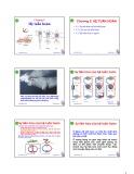 Bài giảng Động vật học và phân loại động vật: Chương 5 - Nguyễn Hữu Trí