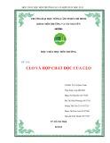 Báo cáo chuyên đề: Độc chất học môi trường Clo và hợp chất độc Clo