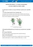Hướng dẫn giải bài 1,2,3,4 trang 139 SGK Sinh học 6