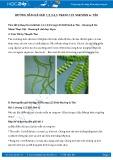 Hướng dẫn giải bài 1,2,3,4,5 trang 125 SGK Sinh học 6