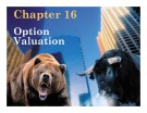 Essentials of Investments: Chapter 16 - Option Valuation