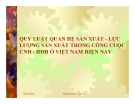 Bài thuyết trình Quy luật quan hệ sản xuất - lực lượng sản xuất trong công cuộc CNH - HĐH ở Việt Nam hiện nay