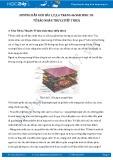 Hướng dẫn giải bài 1,2,3,4 trang 46 SGK Sinh học 10