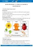 Hướng dẫn giải bài 1,2,3 trang 12,13 SGK Sinh 10
