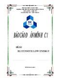 Báo cáo đồ án: Bluetooth low energy