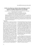 Nghiên cứu tính toán áp dụng công nghệ khoan nổ mìn tạo biên kết hợp sử dụng kíp nổ vi sai phi điện trong các mỏ than hầm lò vùng Quảng Ninh