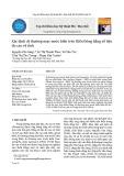 Xác định dị thường mực nước biển trên Biển Đông bằng số liệu đo cao vệ tinh