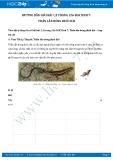 Giải bài tập Thằn lằn bóng đuôi dài SGK Sinh học 7