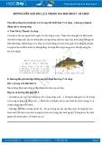 Giải bài tập Cá chép SGK Sinh học 7