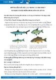 Giải bài tập Đa dạng và đặc điểm chung của các lớp cá SGK Sinh học 7