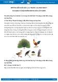 Giải bài tập Đa dạng và đặc điểm chung của lớp chim SGK Sinh học 7