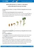 Giải bài tập Những điều kiện cần cho hạt nảy mầm SGK Sinh học 6