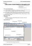 Bài giảng môn Thiết kế web - Phần 4: MacroMedia Dreamweaver