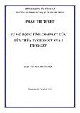 Luận văn Thạc sĩ Toán học: Sự mở rộng tính compact của lũy thừa Tychonoff của 2 trong ZF