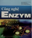 Ebook Công nghệ enzym: Phần 2