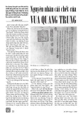 Nguyên nhân cái chết của vua Quang Trung - Bùi Minh Đức