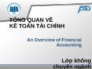 Bài giảng Kế toán tài chính: Chương 1 - ĐH Kinh tế TP.HCM (Dành cho lớp không chuyên)