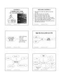 Bài giảng Vệ sinh an toàn thực phẩm: Chương 3 - ThS. Phạm Hồng Hiếu