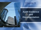 Lecture Principles of auditing and other assurance services (15/e): Chapter 5 - Whittington, Pany