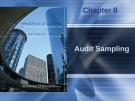 Lecture Principles of auditing and other assurance services (15/e): Chapter 9 - Whittington, Pany