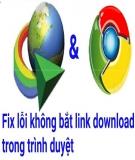 Cách khắc phục lỗi IDM không tự động bắt link Download