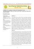Nghiên cứu xạ khuẩn có khả năng đối kháng nấm gây bệnh đạo ôn trên lúa phân lập từ đất tại huyện Thoại Sơn, tỉnh An Giang