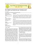 Quản trị mối quan hệ khách hàng tại chi nhánh Ngân hàng Nông nghiệp và Phát triển Nông thôn – Chi nhánh Sài Gòn