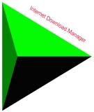 Thay đổi giao diện phần mềm Download IDM
