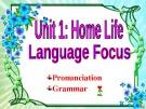 Lesson English 12 Unit 1: Home life (Language Focus)