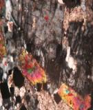 Nhóm nguyên tố đất hiếm và nhóm khoáng sản không kim loại