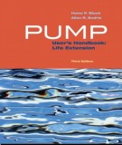 Ebook Pump user's handbook - Life  extension (3rd edition): Part 2