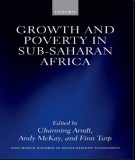 Ebook Growth and poverty in Sub-Saharan Africa: Part 1