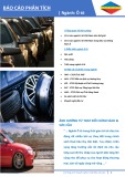 Báo cáo phân tích ngành Ô tô