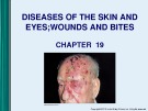 Lecture Microbiology - Chapter 19: Diseases of the skin and eyes; wounds and bites