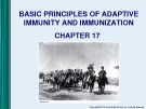 Lecture Microbiology - Chapter 17: Basic principles of adaptive immunity and immunization