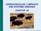 Lecture Microbiology - Chapter 23: Cardiovascular, lymphatic and systemic diseases