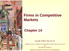 Lecture Principles of microeconomics - Chapter 14: Firms in competitive markets