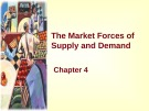 Lecture Principles of microeconomics - Chapter 4: The market forces of supply and demand