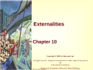 Lecture Principles of microeconomics - Chapter 10: Externalities