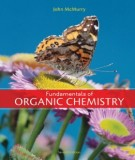 Ebook Fundamentals of organic chemistry (7th edition): Part 2