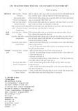 Các thì cơ bản trong tiếng Anh: Cách sử dụng và cách nhận biết