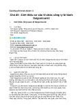 Bài thuyết trình nhóm: Giới thiệu cơ cấu tổ chức công ty lữ hành Saigontourist