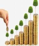 Đề tài: Tác động của việc điều hành lãi suất của NHTW hiện nay tới huy động vốn của các doanh nghiệp VN