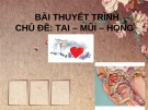 Bài thuyết trình chủ đề: Tai - Mũi - Họng