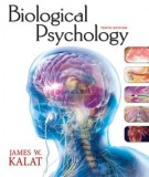 Ebook Biological psychology: Part 1