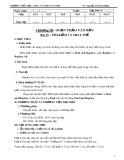 Giáo án Tin  học 6 chương 3 bài 19: Tìm kiếm và thay thế