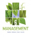 Ebook Management (6th edition): Part 1